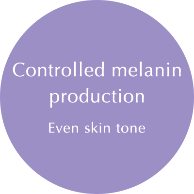 Contorolled melanin production: Even skin tone